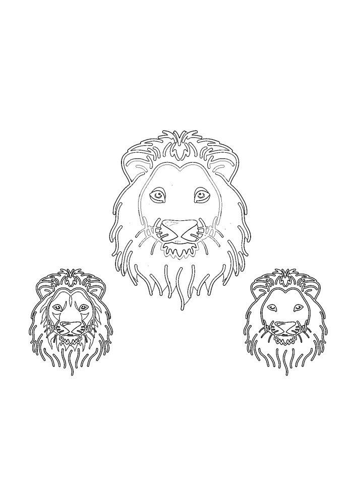 lion coloring page 25
