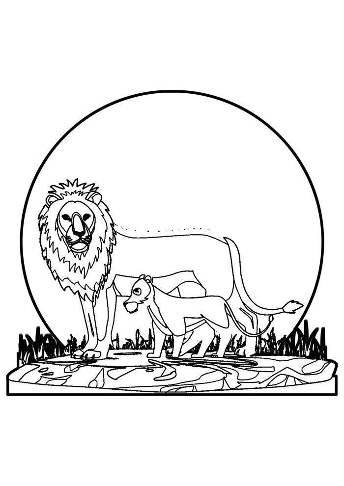 lion coloring page 32