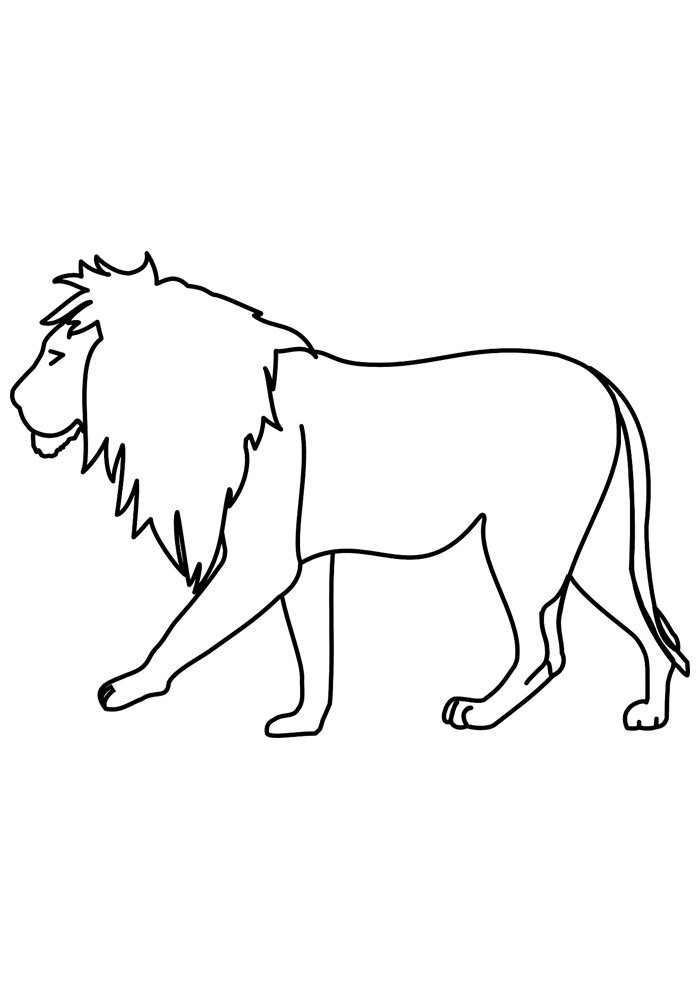 lion coloring page 7
