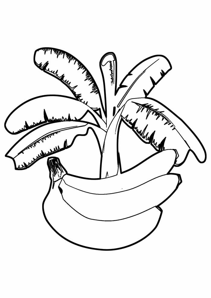 banana coloring page 1