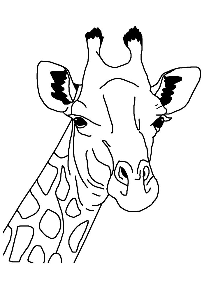 34 Giraffe Coloring Pages Coloring Pages