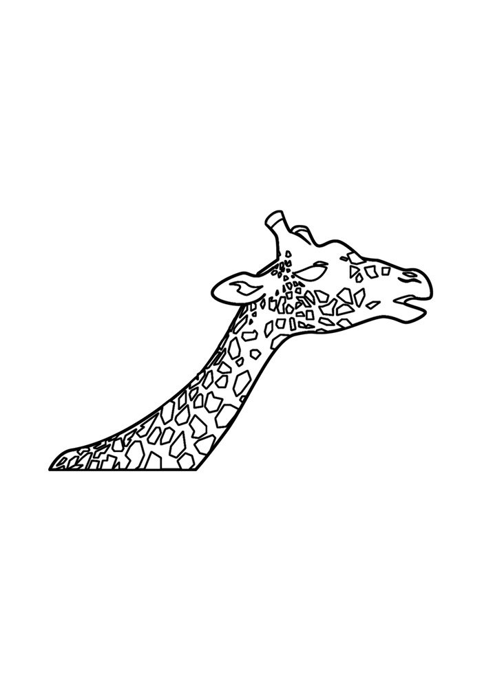 giraffe coloring page 23