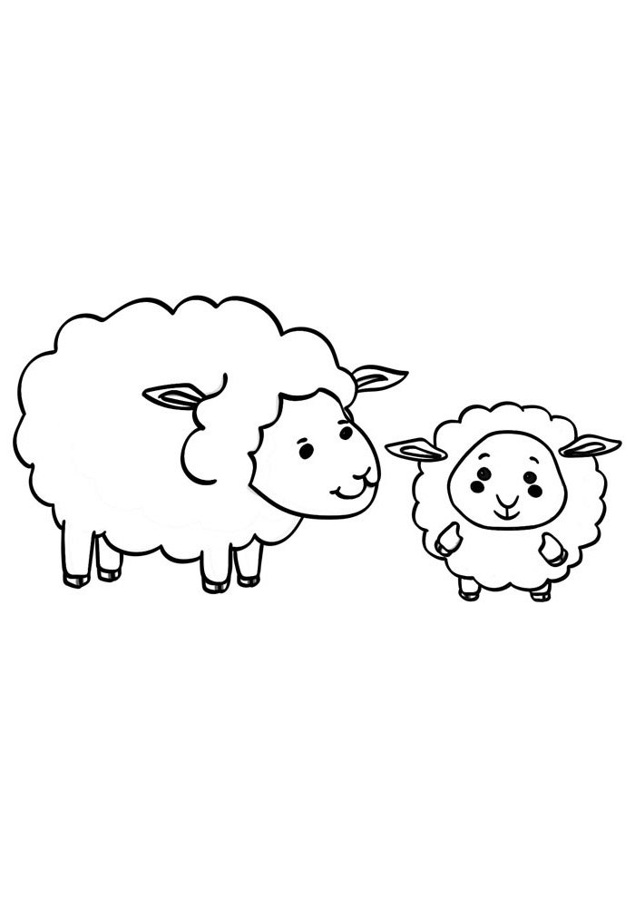sheep coloring page 12