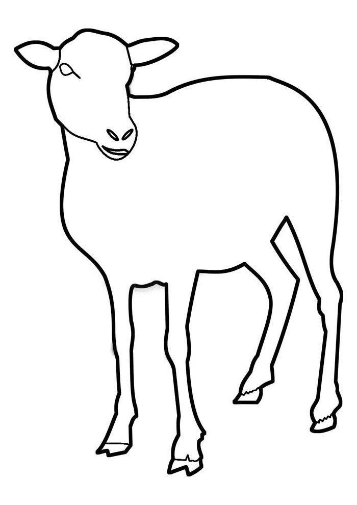 sheep coloring page 16