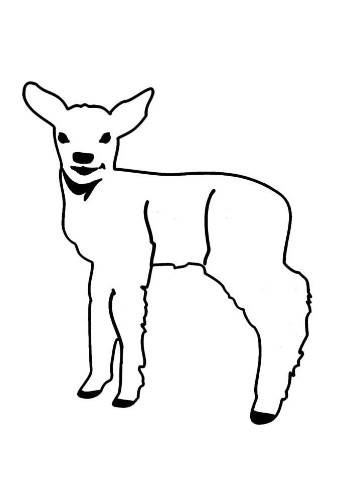 sheep coloring page 8