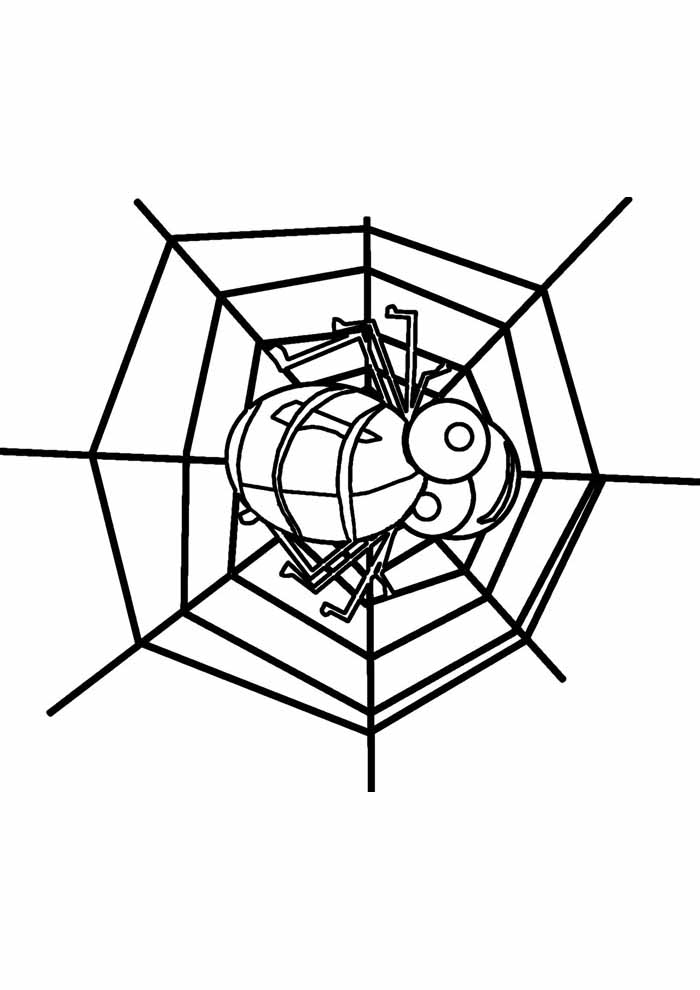 spider coloring page 12