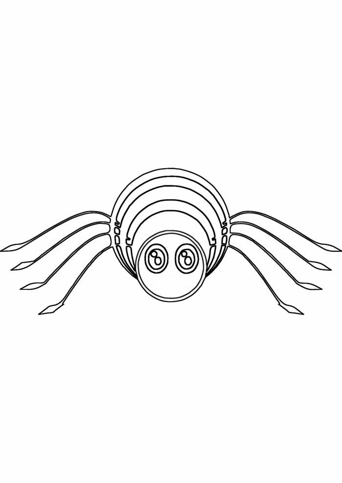 spider coloring page 18
