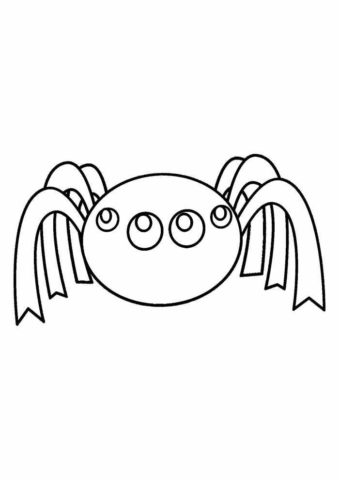 spider coloring page 19