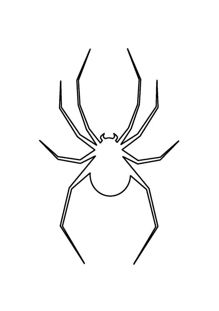 spider coloring page 22