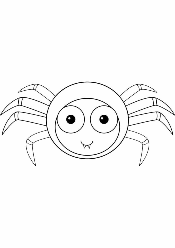 spider coloring page 24