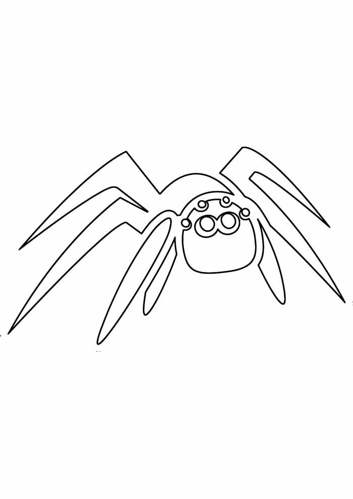 spider coloring page 26