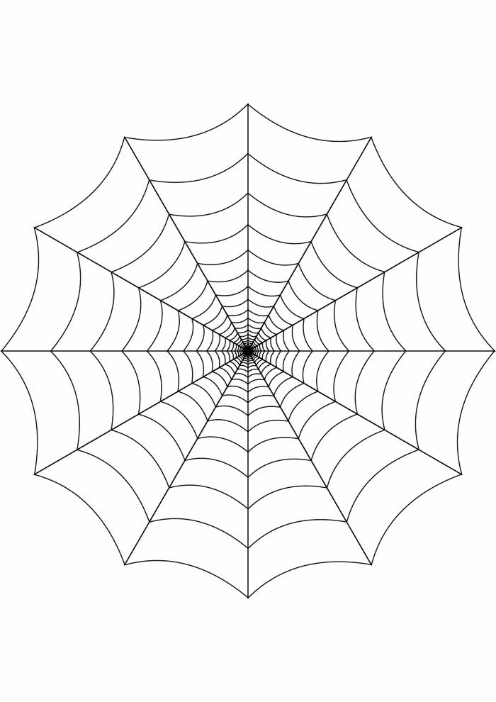 spider coloring page 29