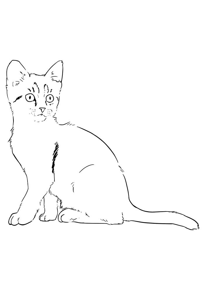 animal coloring page 11