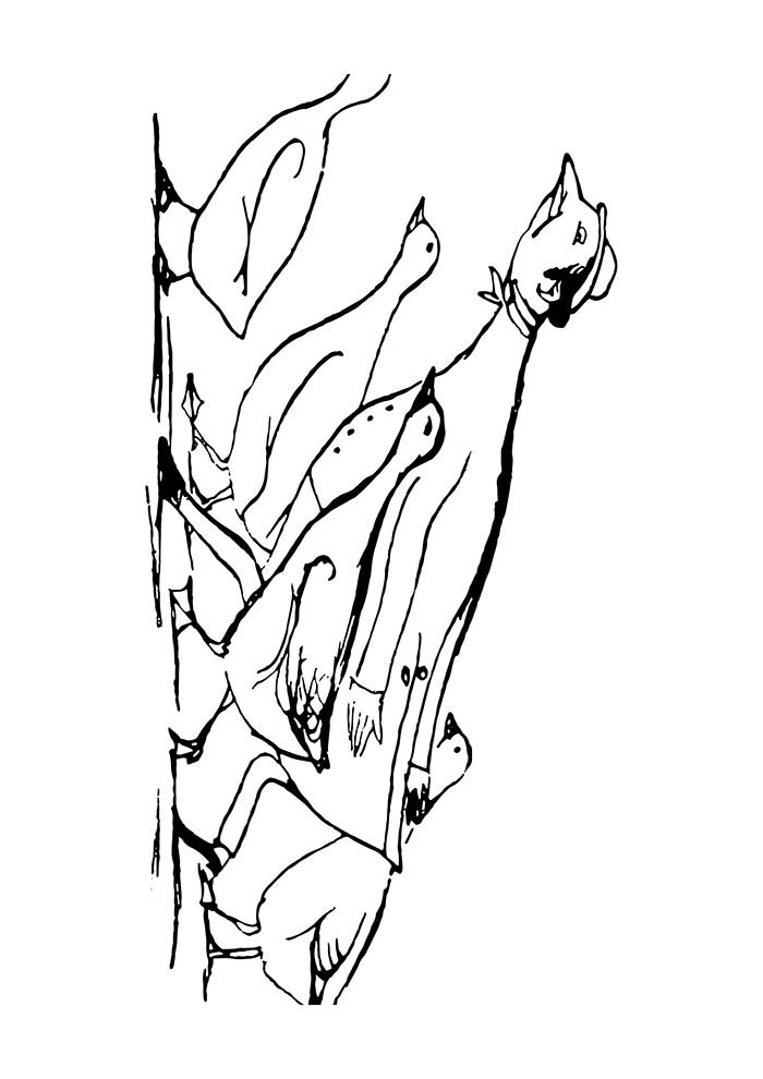 animal coloring page 27