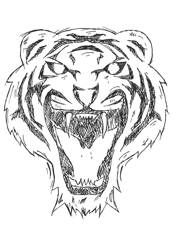 animal coloring page 39