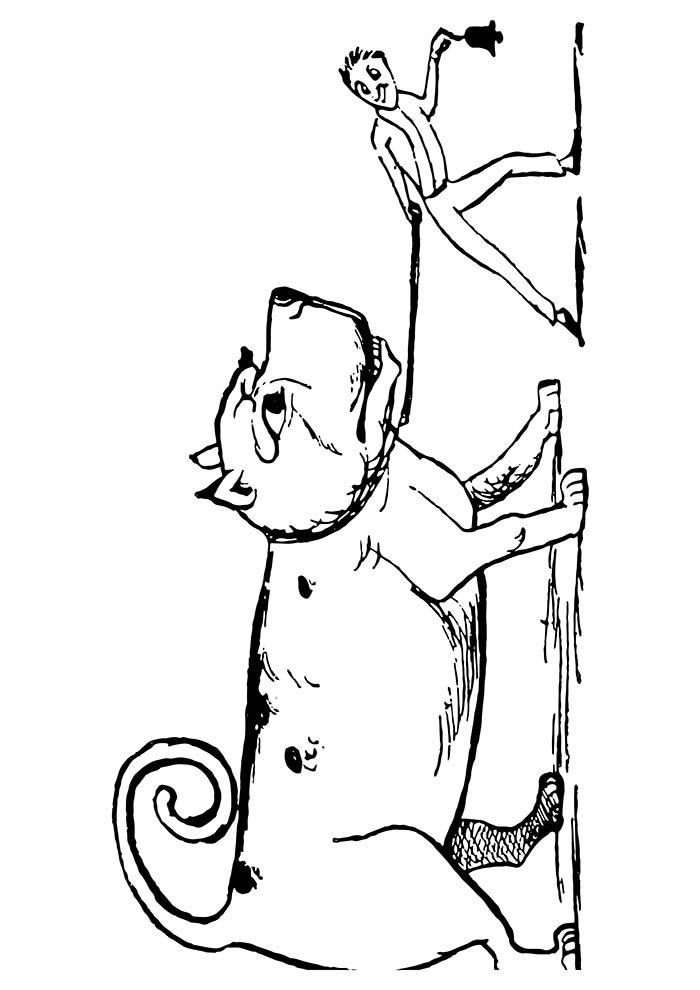 animal coloring page 4