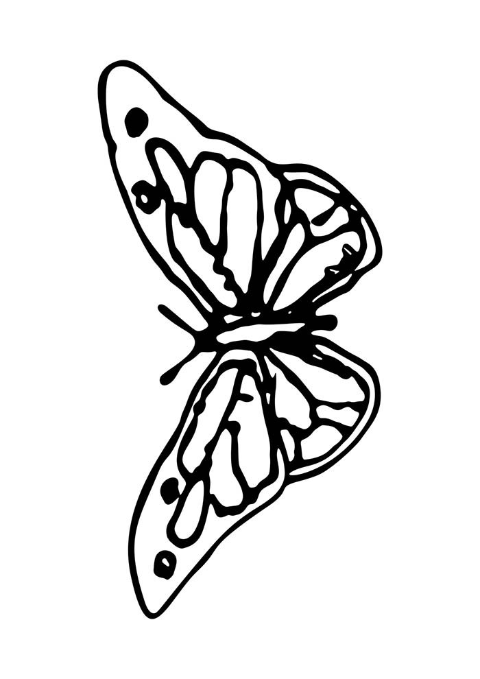 animal coloring page 8